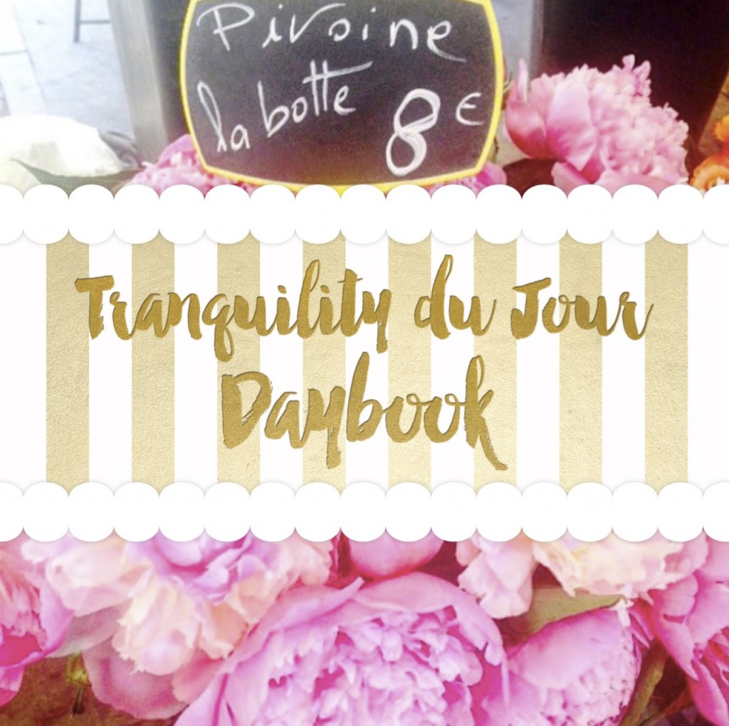 Daybook 4.0