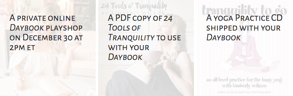 Daybook 6.0 Goodies