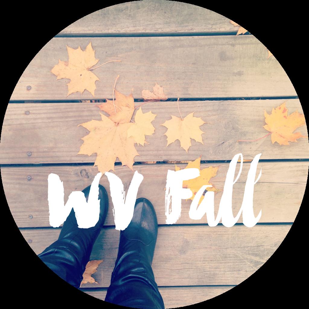 fallWV3